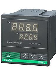 Constant Temperature Controller (Plug in AC-220V; Temperature Range:0-1200℃)