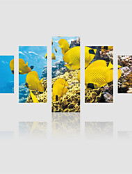 JAMMORY Canvas Set Landscape Five Panels Gallery Wrapped, Ready To Hang Vertical Print No Frame Seabed Yellow Croaker