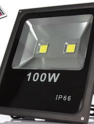 100W LED Flutlichter 9000LM lm RGB Hochleistungs - LED Dekorativ / Wasserdicht AC 85-265 V 1 Stücke