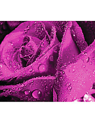 3D Effect Non-woven Large Mural Wallpaper Purple Roses Art Wall Decor Wall Paper