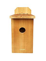 nouvelle caméra oiseau bestok® pour le scoutisme regarder la vie d'oiseau avec la vision nocturne infrarouge martiale et naturelle