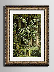 E-HOME® Framed Canvas Art, Beautiful Plants Framed Canvas Print One Pcs