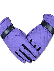 Winter Motorcycle Battery Car Warm Gloves Lady Weatherproof Outdoor Gloves Box Strap