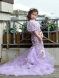 HUA XI REN JIAO Princess Sweep / Brush Train Flower Girl Dress - Lace Tulle Jewel with Beading Flower(s)