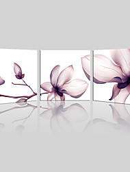JAMMORY Canvas Set Landscape ,Three Panels Gallery Wrapped, Ready To Hang Vertical Print No Frame Purple Flower