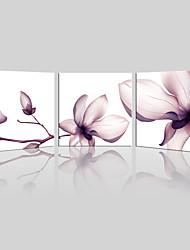 Холст Set / Unframed Холст печати Пейзаж / Цветочные мотивы/ботанический Modern,3 панели Холст Квадратная Печать Искусство Декор стеныFor