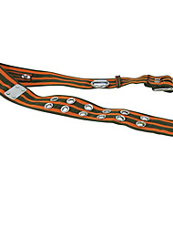 ceinture de sécurité pour la lutte contre l'incendie et de secours