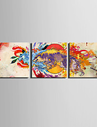 E-HOME® Stretched Canvas Art The Color Of The Animal Decoration Painting  Set of 3