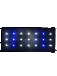 1PCS 30CM 21LED SMD2835 Blue&White Aquarium Fish Tank Waterproof LED Light Bar Submersible Down Lamp AC85-265V