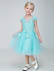A-line Knee-length Flower Girl Dress - Tulle Short Sleeve Jewel with Appliques / Sequins