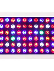 600W Dimmable LED Grow Light Full Spectrum For Indoor Plants and Flower Phrase High Yield aquarium led lighting