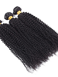 3 Pieces Kinky Curly Human Hair Weaves Peruvian Texture Human Hair Weaves Kinky Curly