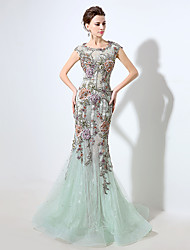 Formal Evening Dress Sheath / Column Scoop Floor-length Lace / Tulle with Pattern / Print