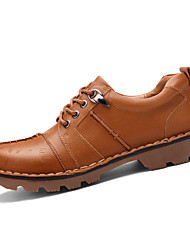 Men's Oxfords Spring / Fall Comfort / Round Toe Leather Party & Evening / Casual Low Heel Others / Lace