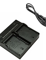 BLF19 Digital Camera Battery Dual Charger for Panasonic DMW-BLF19 Lumix DMC-GH3 GH4GK AG-GH4