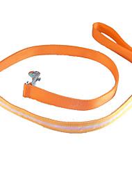 Chien Laisses Lampe LED Solide Rouge / Blanc / Vert / Bleu / Incanardin / Jaune / Orange / Multicouleur Nylon