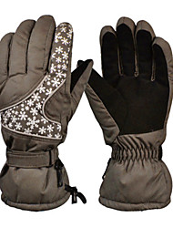 Gants de ski Doigt complet / Gants hivernaux Femme / Tous Gants sport Garder au chaud Ski / Snowboard Gants de ski Hiver