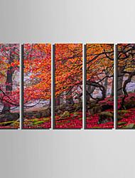 Paysage / Botanique Toile Cinq Panneaux Prêt à accrocher , Format Vertical