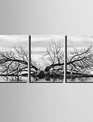 Пейзаж / ботанический Холст для печати 3 панели Готовы повесить , Вертикальная