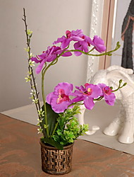 1 Ramo Plástico Outras Orquideas Flor de Mesa Flores artificiais