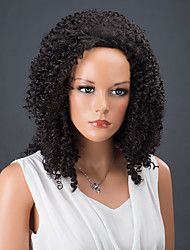 Synthetic Hair Medium Afro Curly Wig