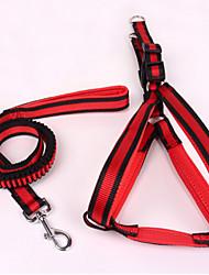 Cães Arreios / Trelas Retratável / Segurança Riscas Vermelho / Azul Náilon / Tecido