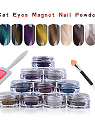 1g/box 3D Effect Cat Eye Magnet Magic Mirror Powder Dust
