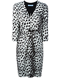 White Spring Women's Go out Casual Daily Sexy Simple Street A Line Dress Leopard V Neck Above Knee Long Sleeve Dress