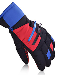 Ski Gloves Full-finger Gloves Unisex Activity/ Sports Gloves Keep Warm / Windproof / Snowproof Ski & Snowboard / Leisure Sports / Skating