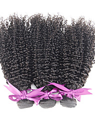 Natural Color Malaysian Kinky Curly Virgin Hair Style 3Pcs Malaysian Virgin Hair Kinky Curly 100% Virgin Human Hair Bundles