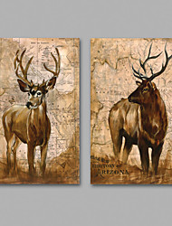 Canvas Set / Unframed Canvas Print Abstract / Animal Classic,Two Panels Canvas Horizontal Print Wall Decor For Home Decoration