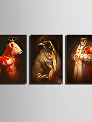 E-HOME Stretched Canvas Art Animal Portraits Decoration Painting Set Of 3