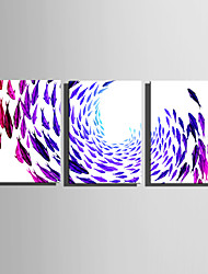 E-HOME Stretched Canvas Art Color Fish Decoration Painting Set Of 3