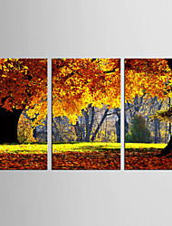 Canvas Set Floral/Botanical Abstract Landscape Pastoral European Style,Three Panels Canvas Vertical Print Wall Decor For Home Decoration