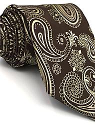 B10 Men's Necktie Tie Brown Paisley 100% Silk Business Fashion Wedding For Men