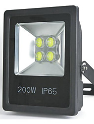 10W COB Flood Light 950LM Ultra Bright LED Security Light (6000 - 6500K) Led Security Light