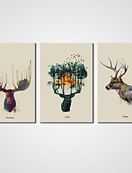 Canvas Prints Abstract Deer Picture on Canvas  3pcs/set for Modern Home Decoration Ready to Hang