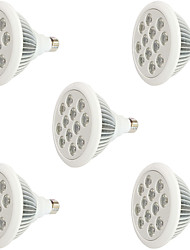24W E27 LED Grow Lights 12 High Power LED 800 lm Red Blue AC85-265 V5 pcs