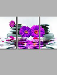 Estampados de Lonas Esticada Vida Imóvel Floral/Botânico Moderno,3 Painéis Tela Vertical Impressão artística Decoração de Parede For
