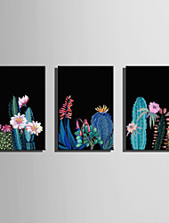 E-HOME Stretched Canvas Art Cactus in The Night Decoration Painting One Pcs