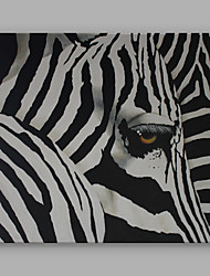 IARTS Hand-Painted Animal Black and White Zebra One Panel Canvas Oil Painting For Home Decoration