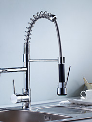 Contemporary Brass Pull-out/Pull-down  360 Rotate Kitchen Faucet - Silver