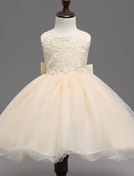 Ball Gown Short / Mini Flower Girl Dress - Lace Satin Tulle Jewel with Bow(s) Lace Sash / Ribbon