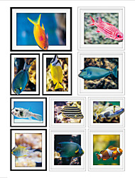 Colorful Fish Frame Drawing PVC Decorative Skin Wall Stickers for The Office Or Living Room