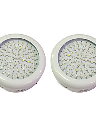 40W LED Grow Lights 50 High Power LED 3000-3200 lm Warm White UV (Blacklight) Red Blue AC85-265 V 2 pcs