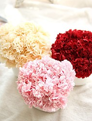 1 Ramo Poliéster Plástico Cravo Flor de Mesa Flores artificiais 8*8