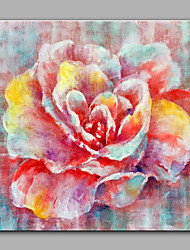 Hand-Painted Abstract The peony   Modern One Panel Canvas Oil Painting For Home Decoration