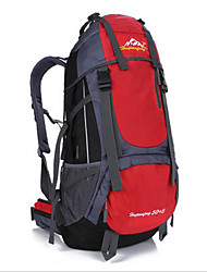 Outdoor Hiking Shoulder Bag Large Capacity Mountaineering Bag Team Travel Backpack 55L Backpack 1PC