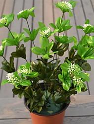 1 Ast Kunststoff andere Tisch-Blumen Künstliche Blumen 25*25*50