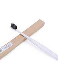 Toothbrush With Small Brush Head (Random Colors)